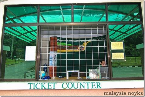 Semengoh Orangutan Rehabilitation Center 26