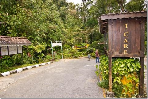 Semengoh Orangutan Rehabilitation Center 1