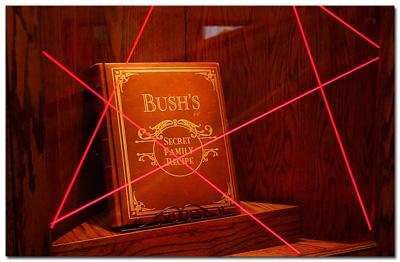 BushSecrets