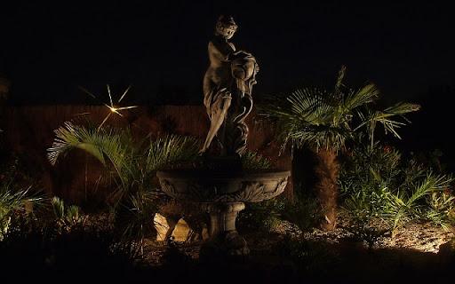 mój ogród nocą