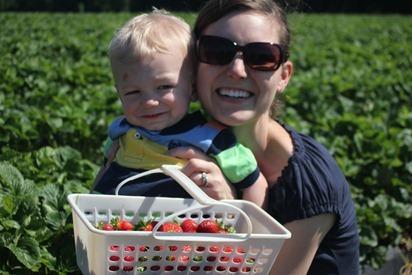 Strawberry Picking 19