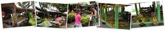 Ver Mercados de Dili