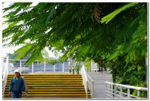 A級●自行車步道 IN KAOHSIUNG