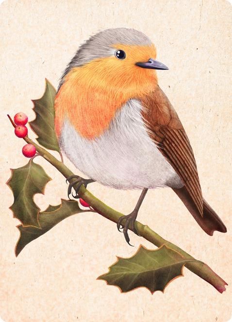 robin on a holly  tree by Maria Khersonets