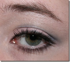 ELF Silver Lining Eye Look (5)