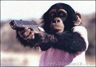 Monyet Dilatih Jadi Anggota Militer 4