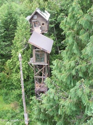 Rumah pohon (2)