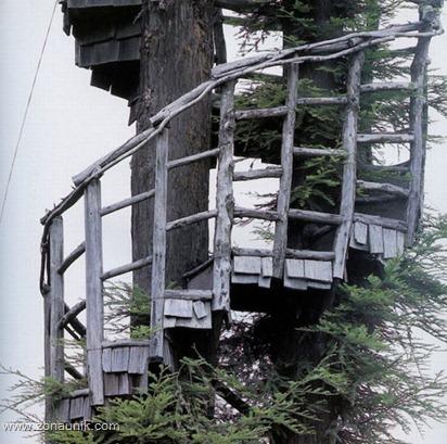 Rumah pohon (19)