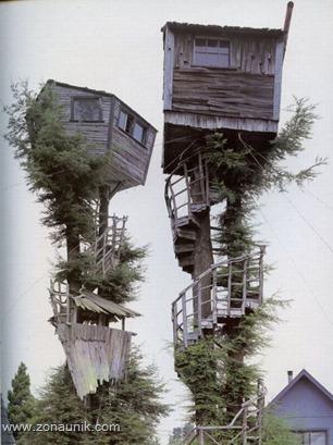 Rumah pohon (20)