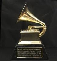 Premios Grammy 2010 en Vivo