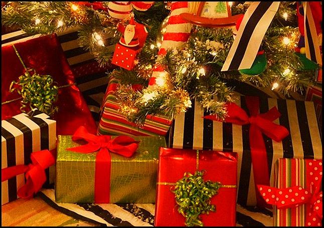 Blog Christmas 2010 023 (800x600)