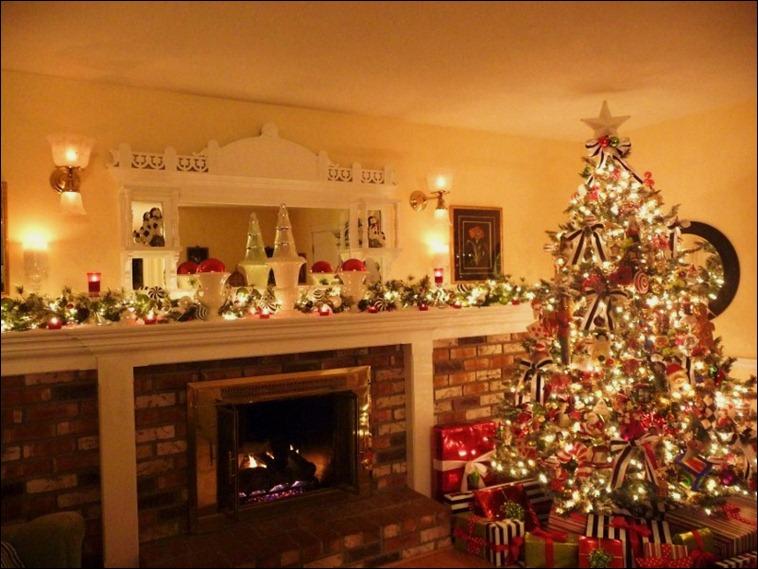 Blog Christmas 2010 019 (800x600)
