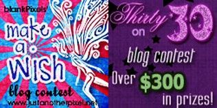 My blog contests in 2010 - Make a Wish and Thirty on 30 - JustAnotherPixel.net