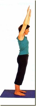 Yoga tipo 8 mudra 1