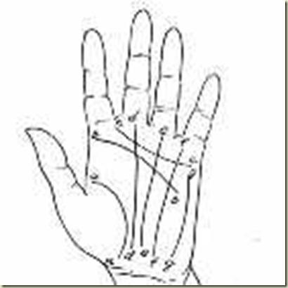 As 7 linhas da mão 140x140
