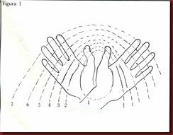 Linhas principais da mão