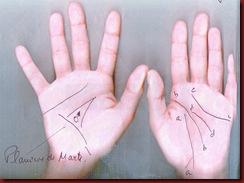 Marie 08 Linhas Principais das Mãos