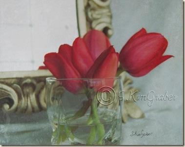 tulipsmirror