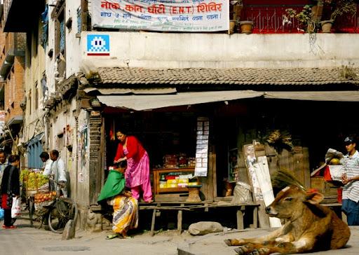http://lh6.ggpht.com/_bKN77pn74dA/S64ZTfbmZ0I/AAAAAAAADYc/SfUfL3l2WZk/Kathmandu%20-%20Nepal.jpg