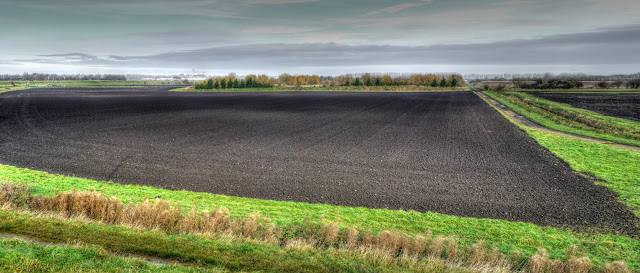 View from NCN11 Near Ely.jpg