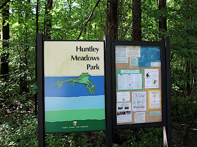 Huntley Meadows Park