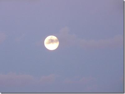 Lua Cheia 21-10-2010 020