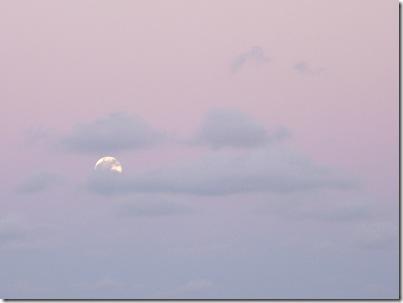 Lua Cheia 21-10-2010 002 c