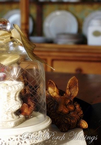 rabbit10