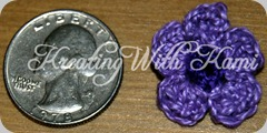 purple crochet mini flower 06_01_10