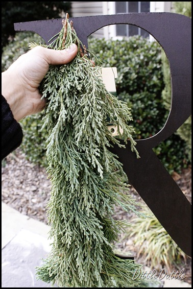 Cedar Wreath