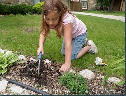 CobraHead Planting Seeds