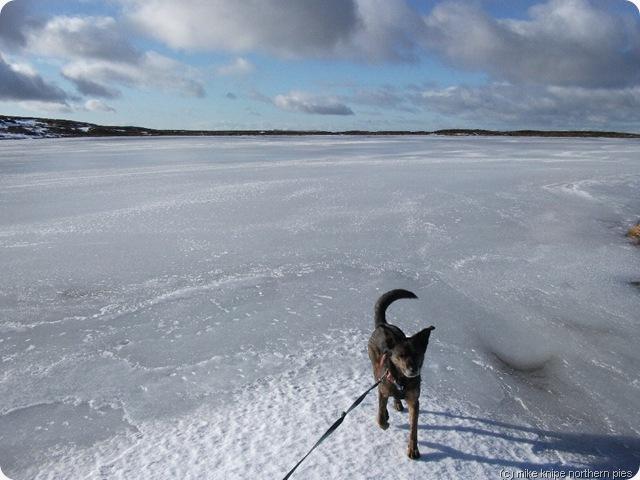 widdale fell tarn frozen