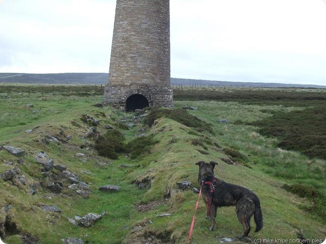 the flue chimney