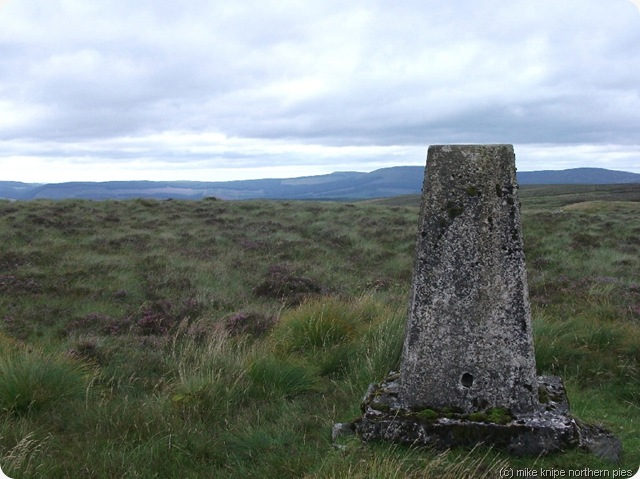 larriston fell trig