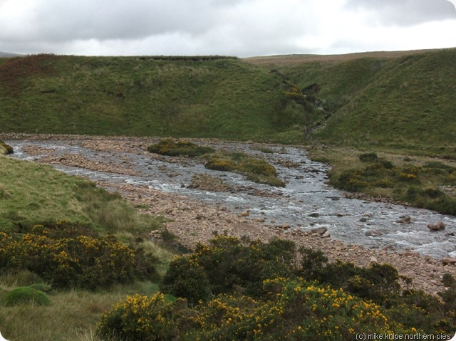 crossing point worm beck