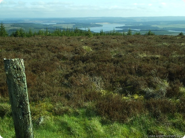 kielder water from greys pike