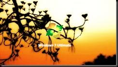 49-Windows_7_Ultimate_Sunset_by_Kruper11