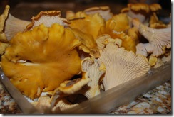 chanterelle-pasta (1)