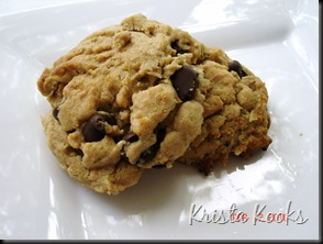 Krista Kooks Peanut Butter Oatmeal Chocolate Chip Cookies 2