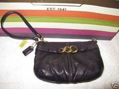 Coach Brooke Large Leather Wristlet