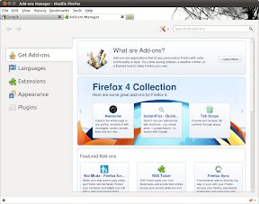 Add-ons Manager - Mozilla Firefox_022