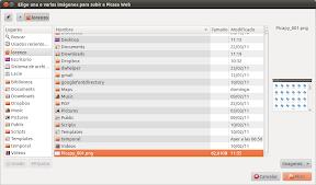 Elige una o varias imágenes para subir a Picasa Web_002