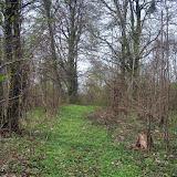 Haupteingang des evangelischen Friedhofs
