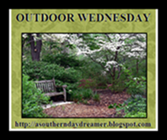OutdoorWednesdaylogo554444