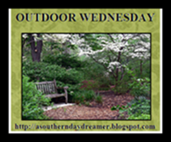 OutdoorWednesdaylogo5454444