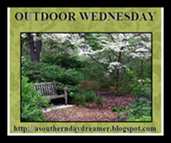 OutdoorWednesdaylogo554