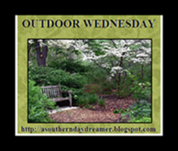 OutdoorWednesdaybutton54333333333332