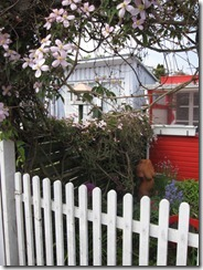 Danmark mai 2011 116