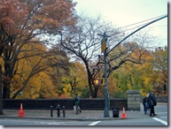 Central Park Fall 3
