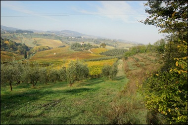 5 Tuscany 09